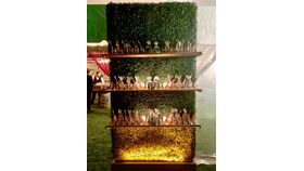 Image of a Display Shelves - Boxwood Walls