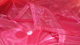 Image of a Fuchsia Organza Overlay with Beads