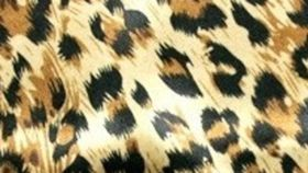 "Image of a 120"" Round Cheetah Satin Tablecloths"