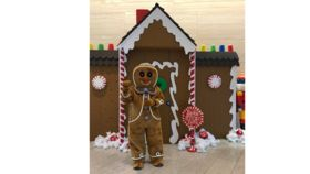 Image of a Gingerbread Costume