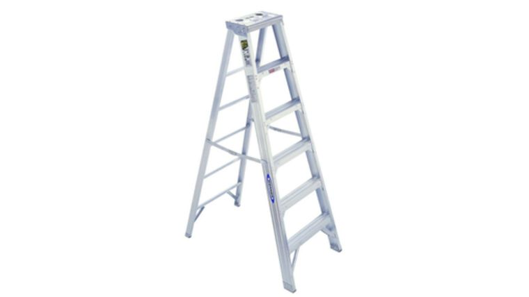 Picture of a 12' Ladders