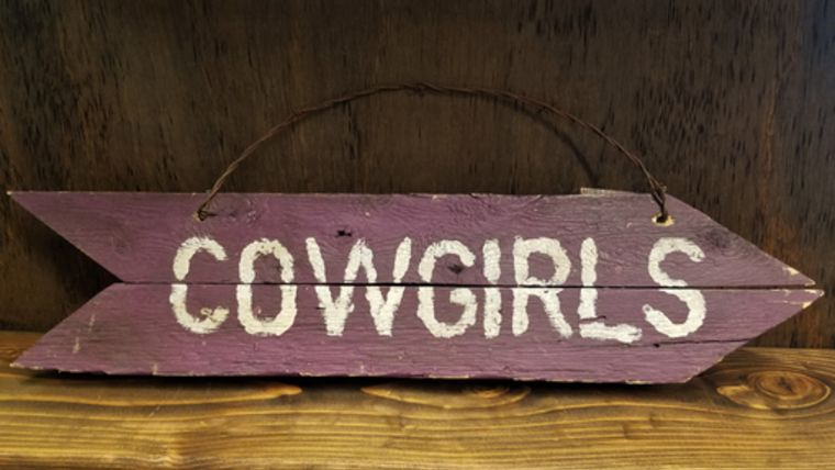 "Picture of a ""Cowgirls"" Sign"
