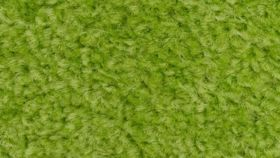 Image of a Lime Green Carpet 10 x 20