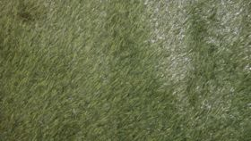 Image of a Grass carpet 10' X 10'