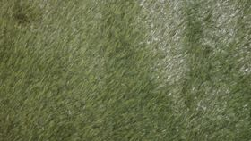 Image of a Grass Carpet 10' X 20'