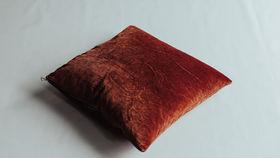 Image of a Velvet Pillow- Rust