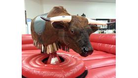 Image of a Mechanical Bull
