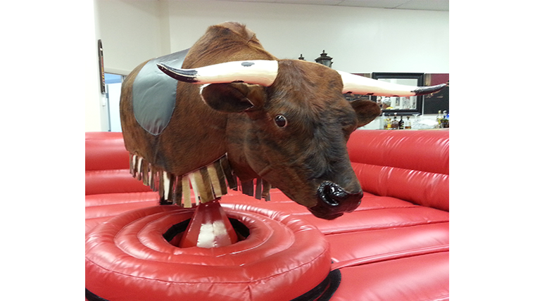 Picture of a Mechanical Bull