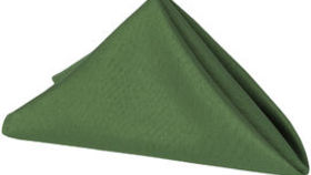 Image of a Willow Green Napkin