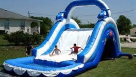 Image of a Water Slide Dolphin 16'