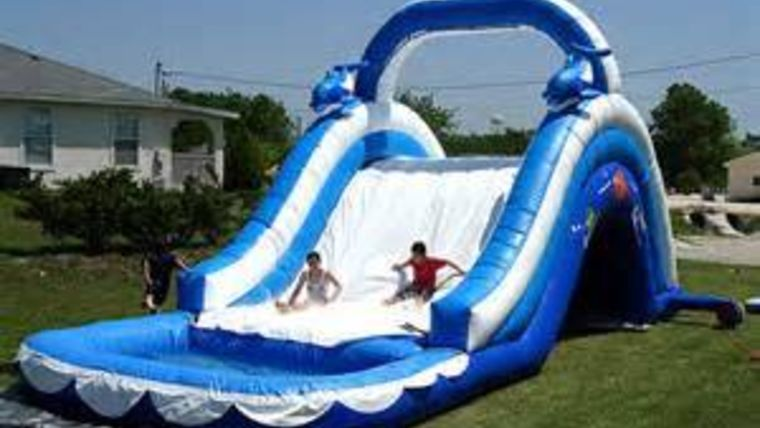 Picture of a Water Slide Dolphin 16'