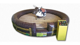 Image of a Mechanical Bull