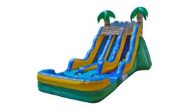 Image of a Water Dual Slide Tropical 17'