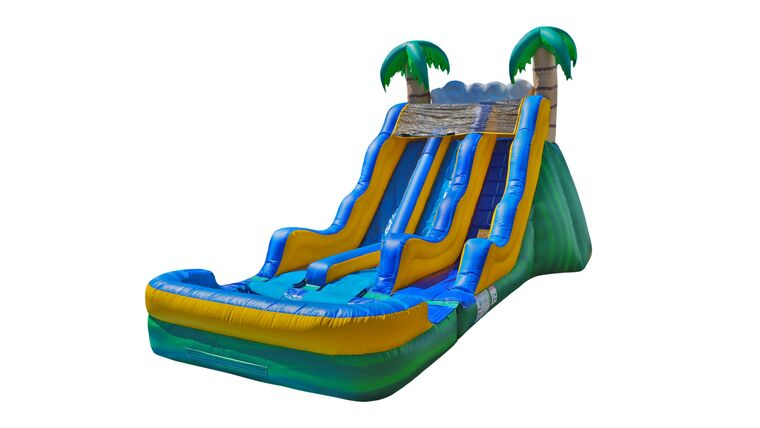 Picture of a Water Dual Slide Tropical 17'