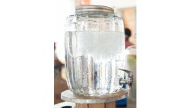 Image of a Cactus Drink Dispenser