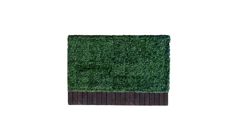 Picture of a 3'h x 6'w Boxwood Hedge With Planter