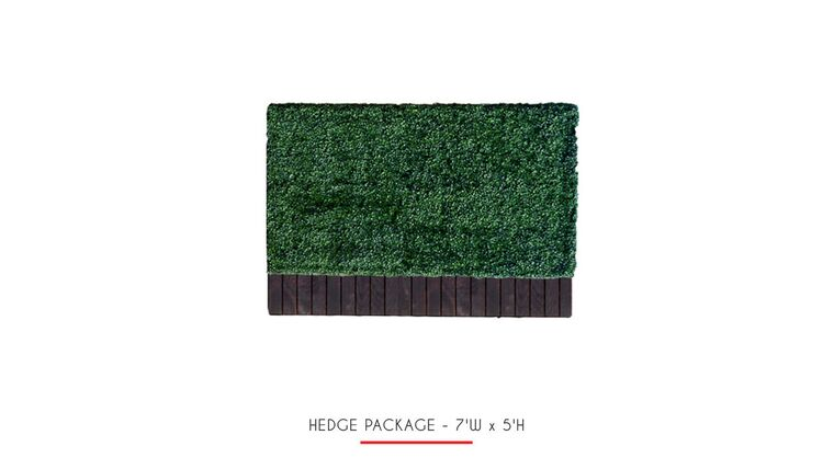 Picture of a 4'h x 6'w Boxwood Hedge With Planter