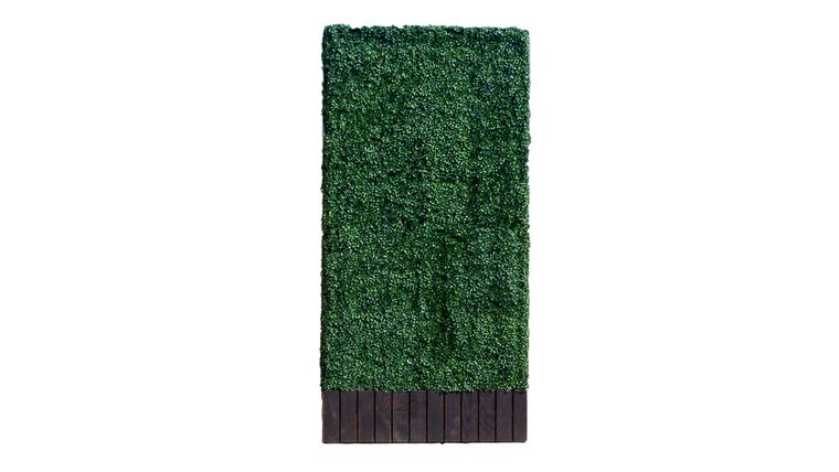 Picture of a 4'h x 7'w Boxwood Hedge With Planter
