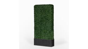 Image of a 8'h x 4'w Boxwood Hedge With Planter