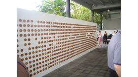 Image of a 8' x 20' White Wood Donut Wall