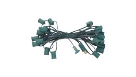 Image of a 25' Green String C7 - LED Clear Bulb String Lights Kit Rental