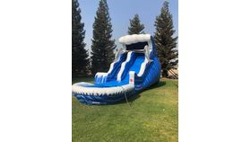 Image of a 18' Dolphin Double Bump Water Slide