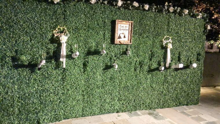 Picture of a 7' x 16' Living Champagne Wall