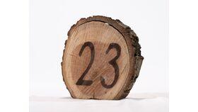 """Image of a Table Number - 5"""" Log Slice/Burned #"""