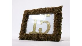 Image of a Table Number - Green Moss Frame w/Gold Glitter