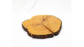 Image of a Log Slice - Thin & Varnished