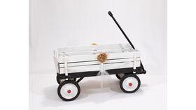 Image of a Wagon