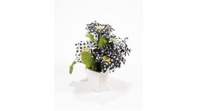Image of a Polka Dot Potted Centerpiece