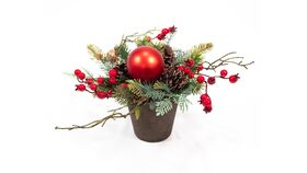 Image of a Christmas Potted Centerpiece