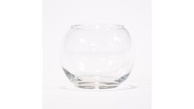 Image of a Fish Bowl 8""
