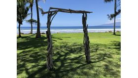 Image of a Driftwood Arch