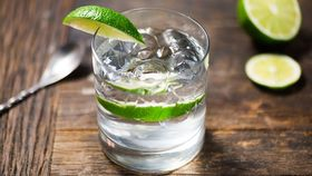 Image of a Gin & Tonic Cocktail