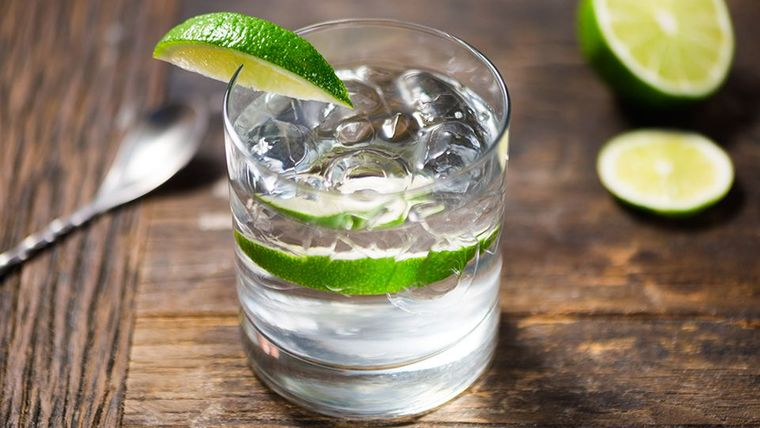 Picture of a Gin & Tonic Cocktail