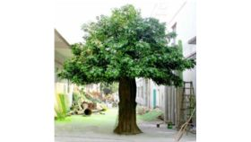 Image of a Artificial Banyan Tree - Large