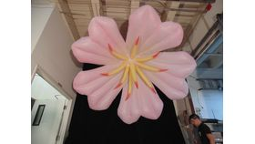 Image of a Air Sculpture - Pink Daisy
