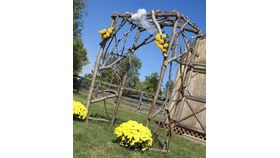 Image of a Arbor - Rustic Wooden