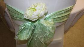 "Image of a Mint Green Organza w/ Swirls 108"" Sashes"