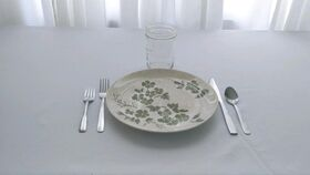 Image of a Decorative Ceramic Dinner Plates