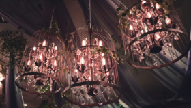 Image of a Bird Cage Chandelier