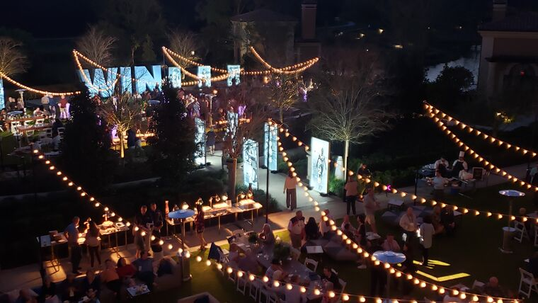 Picture of a 4 Seasons - Lady Palm Lawn, Market Lights - Zigzag
