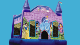 Image of a Princess Castle