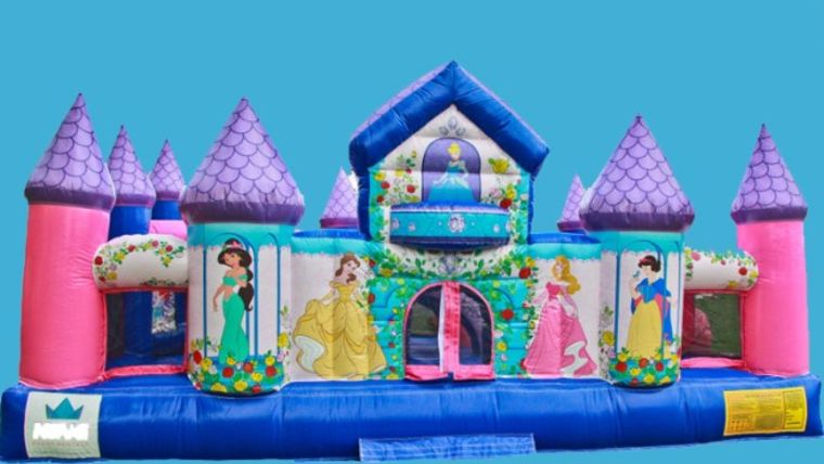 Picture of a Princesses Playland
