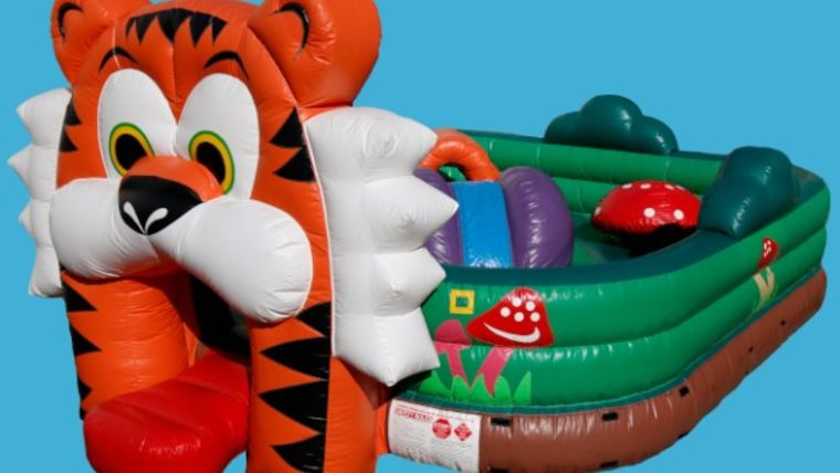 Picture of a Safari Playland
