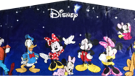 Image of a All Disney Banner