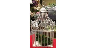 Image of a Bird Cage