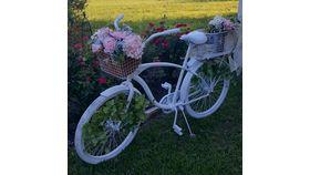 "Image of a Bicycle ""Peony"" No Decor"